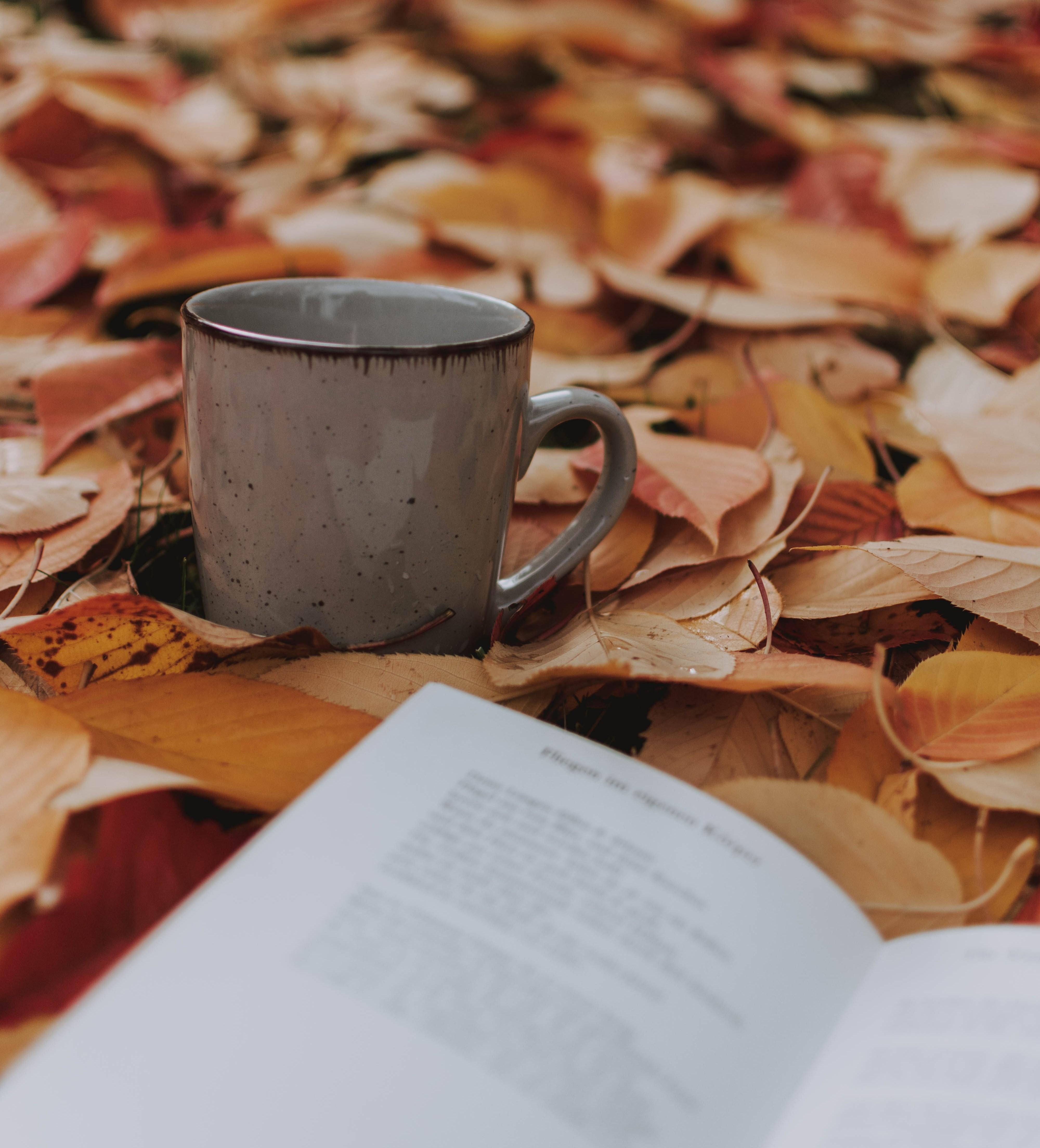 gray-ceramic-mug-on-dried-brown-leaves-3150551